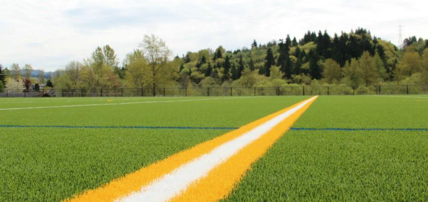 International Field