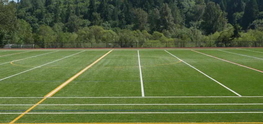 International School Field
